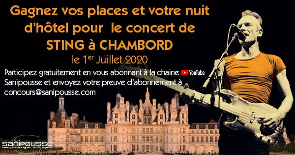 Jeu STING à Chambord